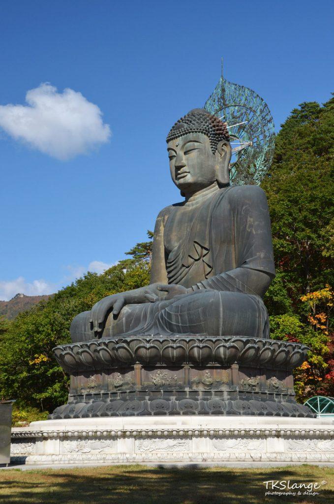 A large Buddha sits near the park entrance.
