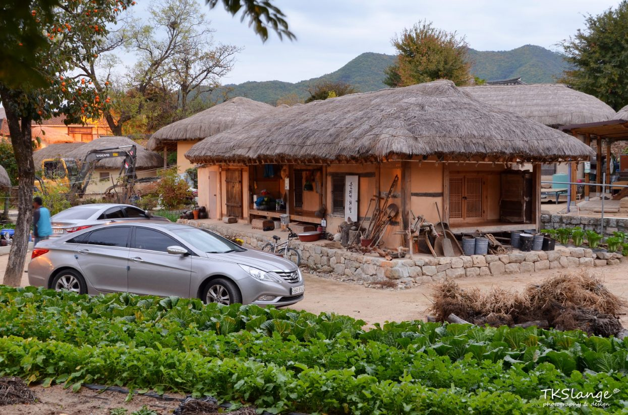 Not all is traditional in the village. All modern luxuries are available, including television, internet and mordern cars.