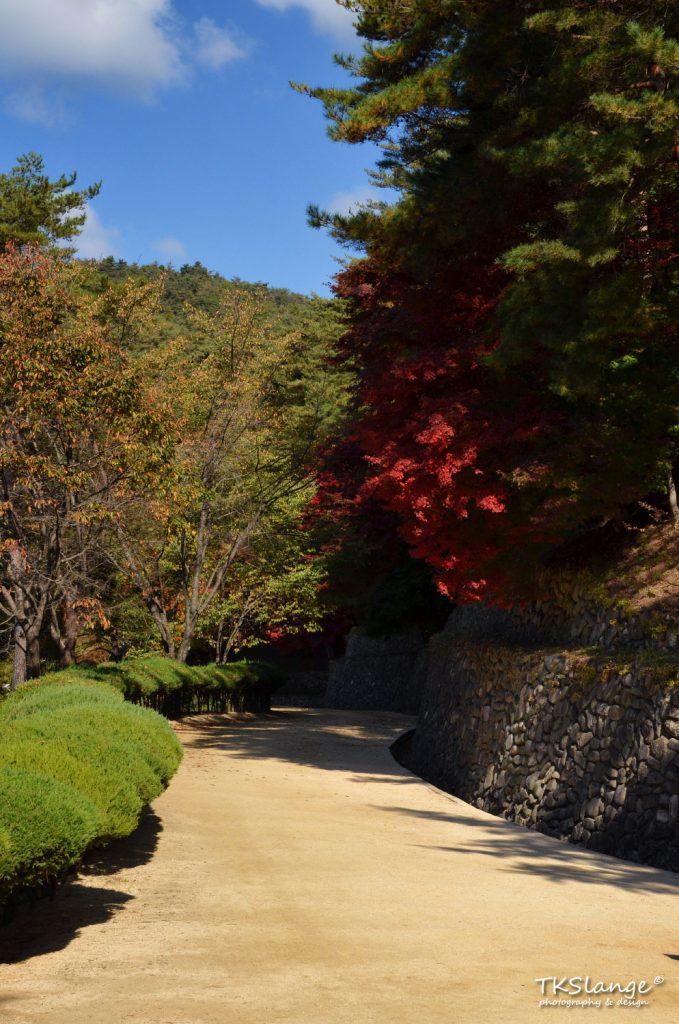 The path to Dosan Seowon with autumn colours.