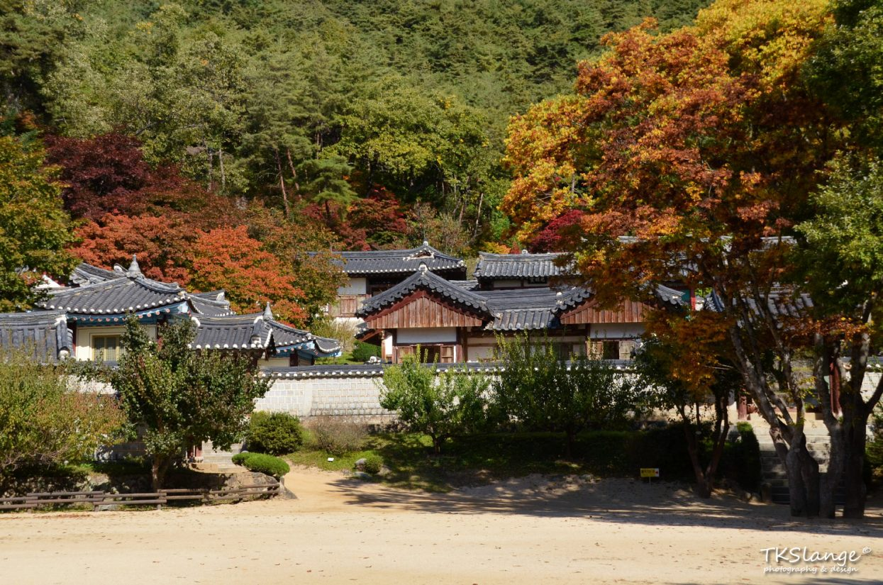 Dosan Seowon lies between mountains and dense forests.