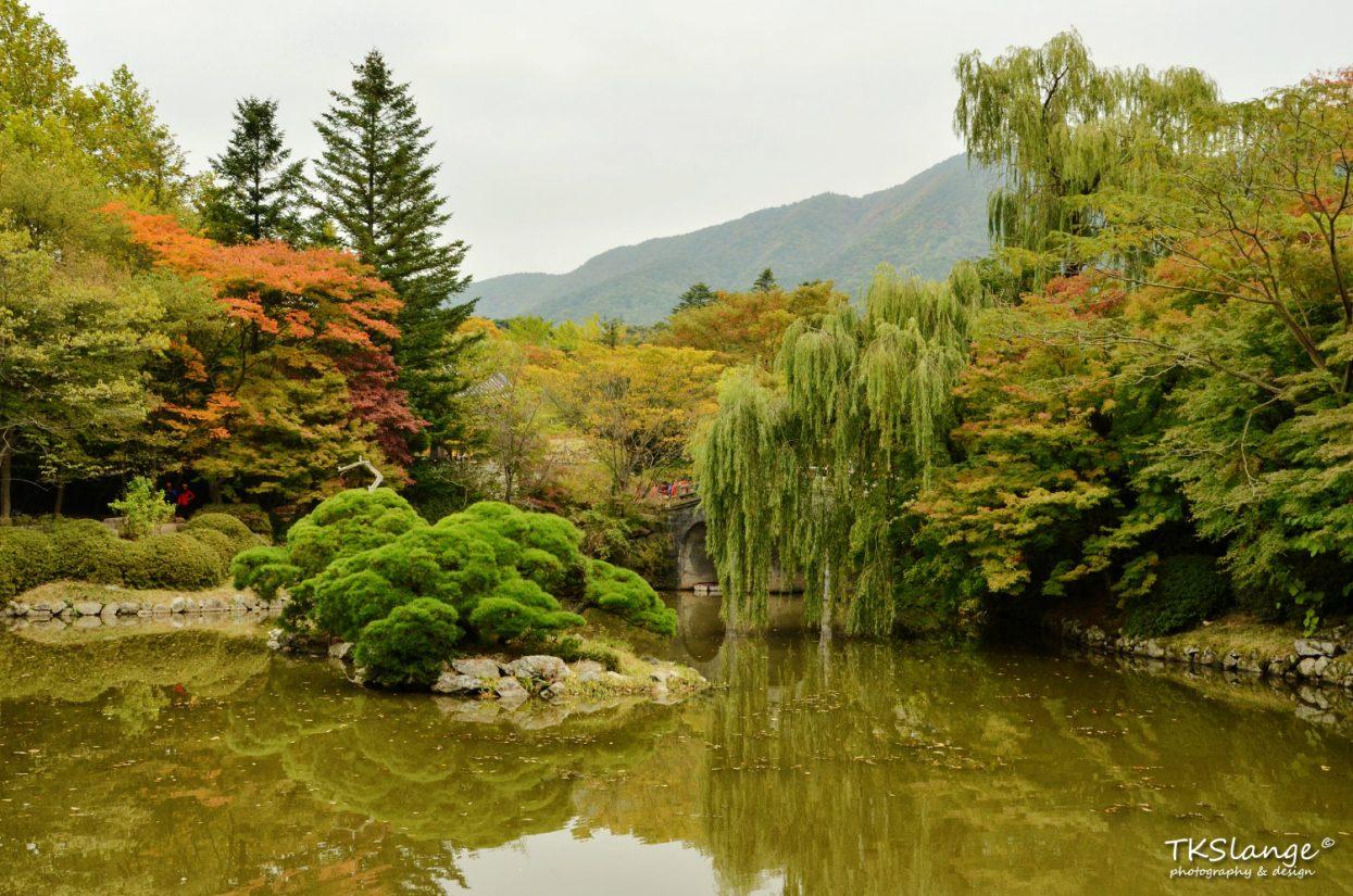 The garden of the Bulguksa Temple.