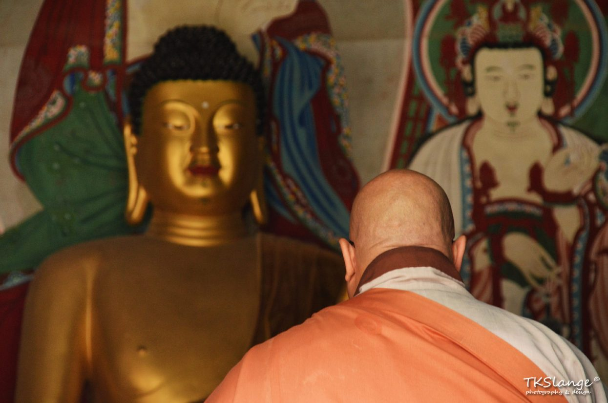 A munk says his prayer to the golden Buddha.