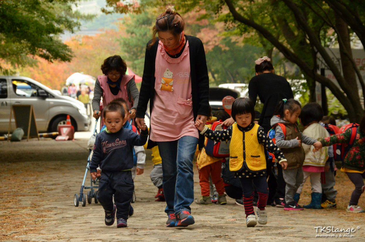 The kindergarten is going for a hike in the forest next to Bulguksa Temple.